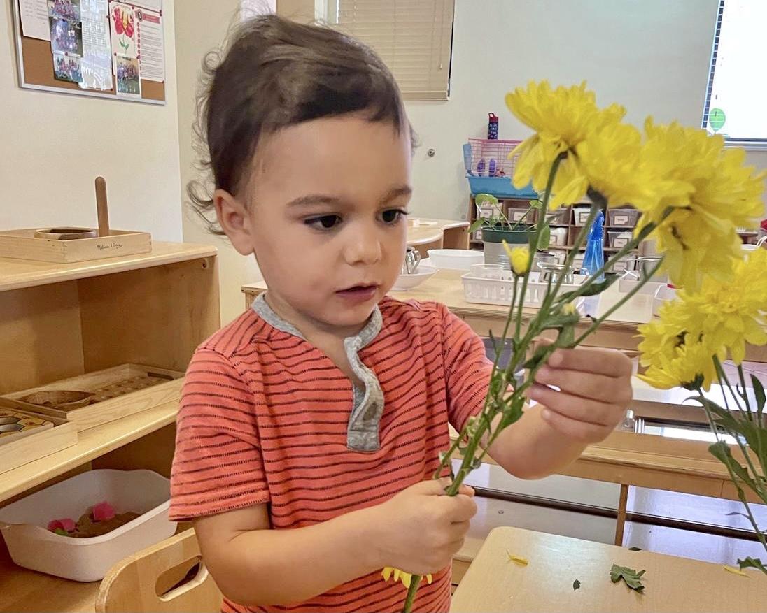 Montessori flower arranging
